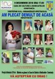 AM PLECAT DEMULT DE ACASA (09-12-2018)